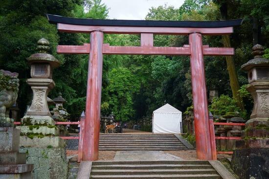 奈良・春日大社の鳥居の写真